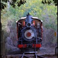 estação Carlos Gomes da Cia. Mogiana de Estradas de Ferro (1926-1971) - ferrovia de Campinas para Jaguariúna