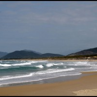 Praia de Joaquina, Florianópolis, Santa Catarina