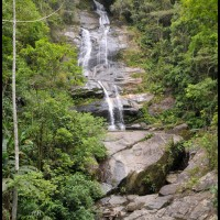 Floresta Tujuca, Rio de Janeiro (16/12/2012)