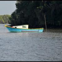 Ilha do Cardoso, litoral sul de São Paulo (01/03/2012)