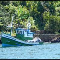 pescadeiro, Angra dos Reis (RJ)