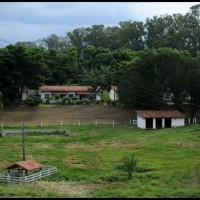 Campinas: Maria Fumaça ... no caminho da estação Pedro Américo para Campinas