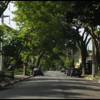 rua em Morumbi, São Paulo
