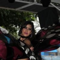 danca do vente na Expoflora, Holambra